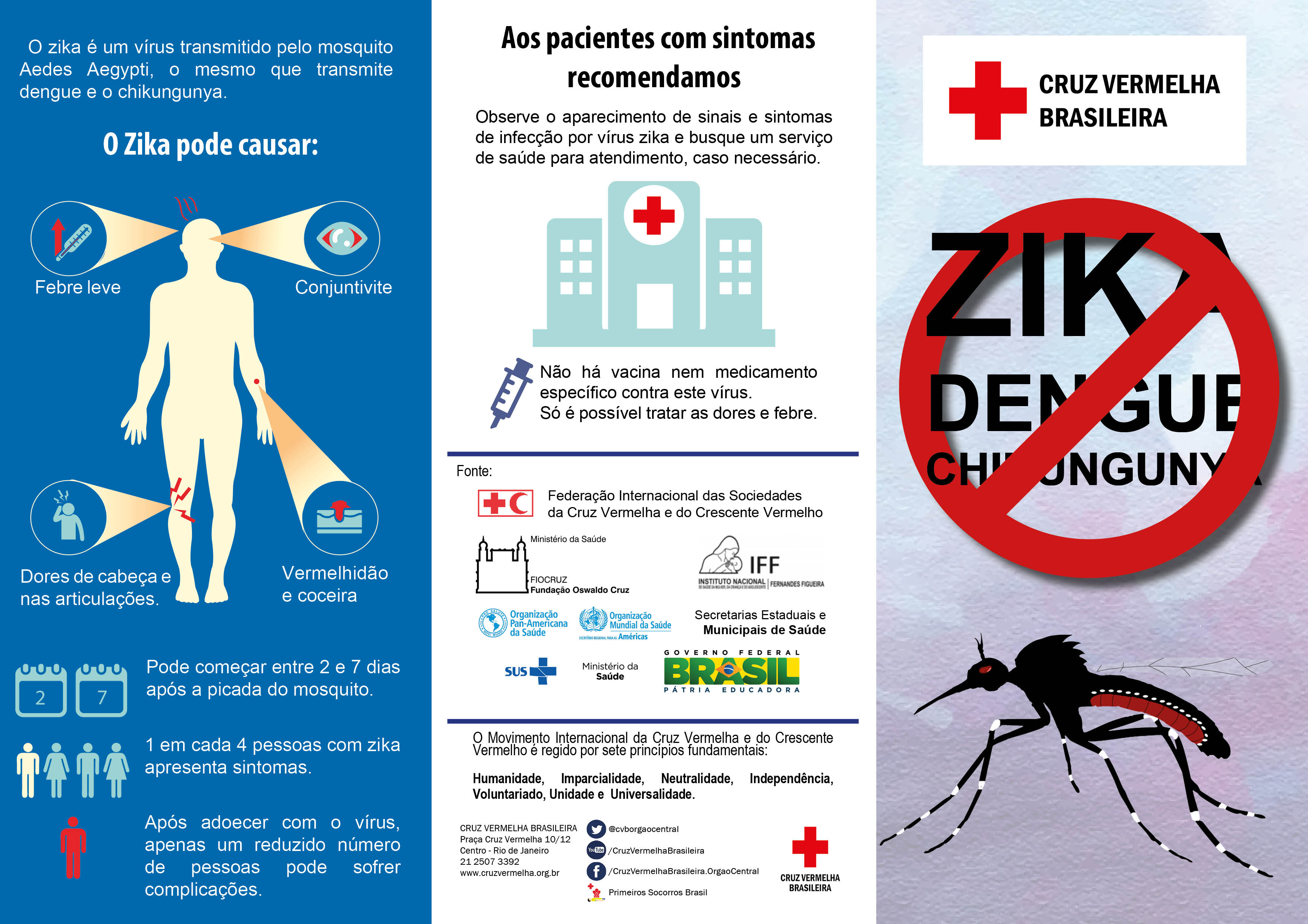 the transmission and prevention of the zika virus The zika virus is spread by bites of infected mosquitoes it can be particularly dangerous to fetuses and newborns.