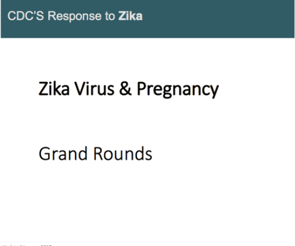 Cover slide for the Zika Virus and Pregnancy: For Obstetric Healthcare Providers.