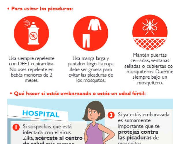 What do I need to know about the Zika virus?