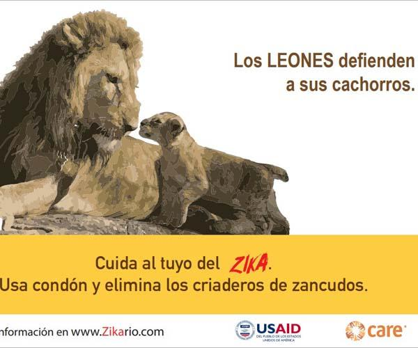 Poster: Lions take care of their puppies