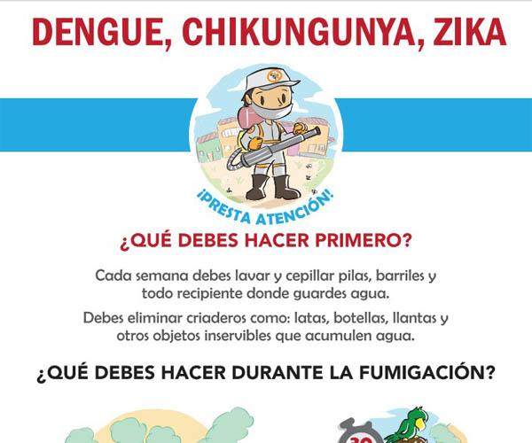 Dengue, chikungunya, Zika: What should you do first?