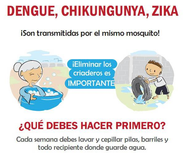 Dengue, chikungunya, Zika: Éliminer les sites de reproduction est important