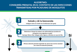 Counseling algorithm in the context of mosquito bite infections