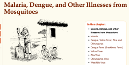 Malaria, Dengue, and Other Illnesses from Mosquitoes